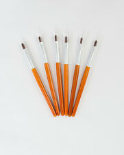 6  x cosmetic lip brushes