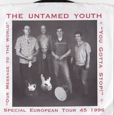 RARE Modern 45 Garage Punk Surf Untamed Youth Message To The World
