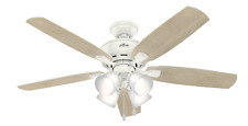 Hunter 53217 Indoor Amberlin Ceiling Fan with LED Light, White