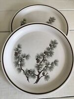 2 Vintage Select PINE CONE Dinner Plate by Town & Country La Marguerite Brown