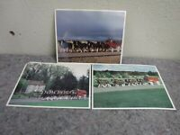 Three Vintage Pictures of Budweiser Wagon & Clydesdale Teams