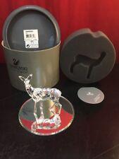 Swarovski Crystal Figurine DOE DEER (Rare Encounters) in Box w/ COA 247963