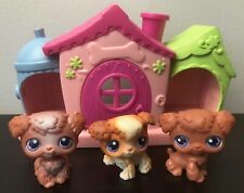 LPS Littlest Pet Shop Poodle Dog #37 #38 #39 triplets petriplets accessory