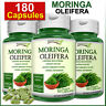 180 Capsules MORINGA OLEIFERA Natural Multi Vitamin Vegetarian No Powder ORGANIC