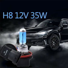 2Pcs H8 12V 35W Xenon White 6000k Car Halogen Fog Head Light Lamp Globes Bulbs