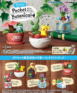 Japan Pokemon x Re-ment ✨  Pocket Botanical ✨ Limited Blind Box