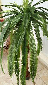 künstliche pflanzen bäume dekoartikel Farnpalme 170cm  künstliche pflanzen
