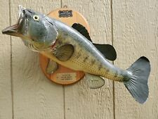 Big Real Skin Largemouth Bass Fish Taxidermy Fishing Decor