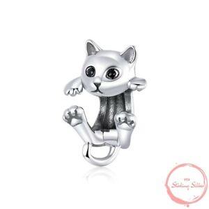 Charm Anhänger Hängende Katze Katzen Pfote Pfoten Perle 925 Silber für Pandora