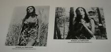 1966 LOT of 2 WOMAN and TEMPTATION PROMO MOVIE PHOTOS SEXY BUSTY ISABEL SARLI