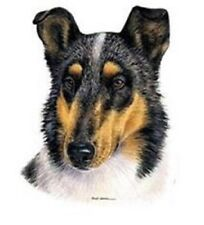 """Collie Smooth (TriColor) Dog Head. Pic 8""""x9"""" within 16"""" fabric panel. To Sew."""
