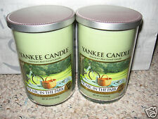 Yankee Candle PICNIC IN THE PARK Large 2 Wick Tumblers 22oz Candle Set of 2