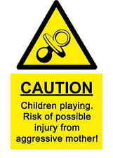 A5 Joke Children Playing Sticker -Play Area Climbing Frame Drive Health & Safety