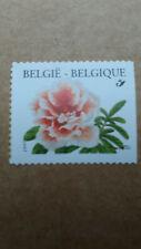 """Belgique 1998  N° 2733 Fleur """"Rhododendron""""  """"Non-dentelé sur bord droit"""""""