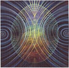 EVOLUTION BY AMANDA SAGE BLOTTER ART - ACID ALEX GREY HIGH QUALITY