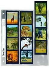 Pana-Vue 120-3x4 Negative Preserver pk/25 Holds 3 Strips of 4,12 Frames Per Page