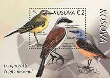 Kosovo 2019 Neuheit Einheimische Vogelarten Europaausgabe Ornithologie Block