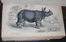 1850-1899 Englische Antiquarische Bücher