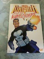 The Punisher kills the marvel universe