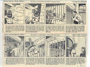 Tarzan by Burroughs & Juhre - 12 large daily comic strips from February 1937