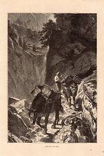 CHEVAUX DE BAT HORSE SUISSE SCHWEIZ IMAGE 1912 OLD PRINT