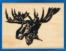 Moose Head Rubber Stamp by Far North Images - Animal Canada Alaska Elk
