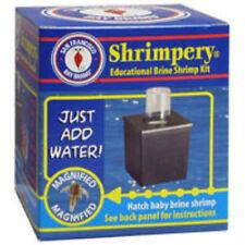 Shrimpery Brine Shrimp Kit - San Franciso Bay