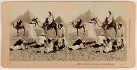 Egyptes le Piramidi Cammelli Foto Stereo Vintage Albumina 1898