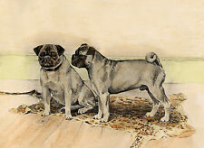 PUG CHARMING DOG GREETINGS NOTE CARD TWO BEAUTIFUL DOGS STAND ON RUG