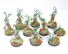 WARHAMMER Fantasy 10 WOOD ELF sylvaneth Dryads ben dipinto C