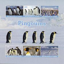 Chad 2017 MNH Penguins 6v M/S Penguin Birds Stamps