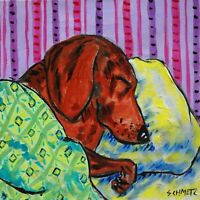 Dachshund dog sleeping with green blanket in bed bedroom art tile coaster gift
