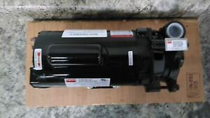Dayton 2ZWP3A 3/4 HP 3450 RPM 120/240VAC Straight Centrifugal High Flow Pump