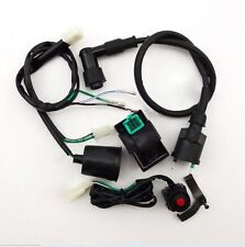 Wiring Loom Harness Kill Switch Ignition Coil CDI For CRF50 Dirt Bike Motorcycle