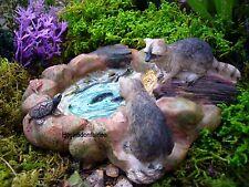 Miniature Fairy Garden Raccoon Pond MG 134  Faerie Hobbit Gnome Dollhouse