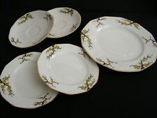 Five vintage Myott Son & Co Blossom patterned plates.