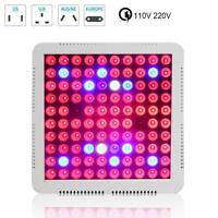 500W LED Grow Light Hydroponic Full Spectrum Indoor  Flower Plant Lamp Panel