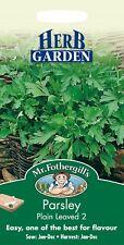 Mr Fothergills - Pictorial Packet - Herb - Parsley Plain Leaved 2 - 1000 Seeds