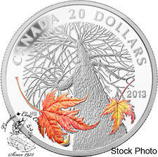 Canada 2013 $20 Canadian Maple Canopy Autumn Silver Coin