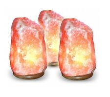 Natural Himalayan Rock Salt Lamps 2-3 Kgs Pack of 5 Lamps Wholesale Price
