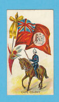 MILITARY / FLAGS - ANON. - 10 RARE FLAGS WITH SOLDIERS CARDS - CAPE COLONY -1902