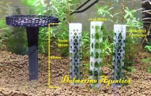 Moss holder for Aquarium, ideal for shrimp fish nano and larger tanks
