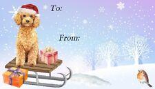 Poodle Apricot Dog Christmas Labels by Starprint - Design No. 7