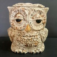 "Owl Cookie Sugar Coffee Tea Jar 5.75"" Sitter Ceramics Double Faced Vintage"