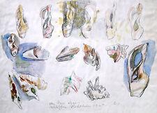 """Wolfgang von Websky 1895-1992 Wangen / Aquarell """"abgeschliffene Muscheln"""" 1964"""
