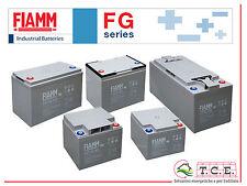 Batteria AGM FIAMM 12 FGL 100 - 100Ah