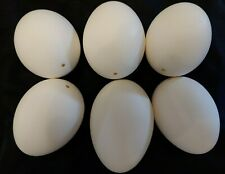 """6 Empty Blown Goose Eggs Blown White Shell Pysanky Easter One Hole 8""""~8 1/2"""""""