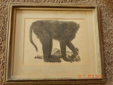 Janet Turner - Original signed proof STUDY OF A MONKEY 1959 lithographic edition