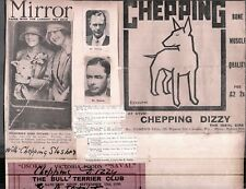 Vintage Litho Clipping 1920-1930'S Bull Terrier Dogs & Show Card London England