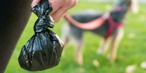 100 Dog Poo Poop Bags THICK PREMIUM FRAGRANCED Tie Handles Quick Easy Disposable